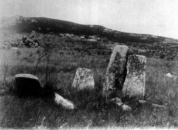 Groupe de menhirs dans la région de Sartène (Corse du Sud)