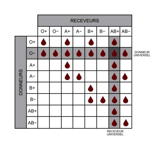 Tableau 2 : Compatibilité sanguine des donneurs et des receveurs
